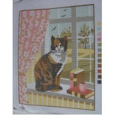 Långstygnstavla katt